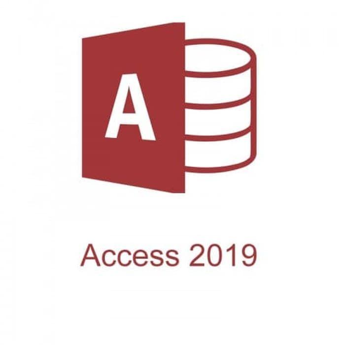 Microsoft Access 2019 Single OLP NL, 077-07233